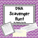DNA Transcription & Translation Scavenger Hunt