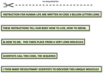 DNA: Startup Activity
