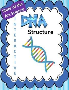 DNA Structure Doodle Handout