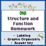 DNA Structure Function Homework Worksheet