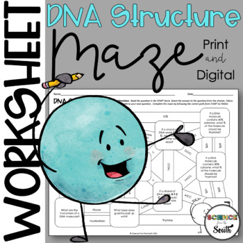DNA Structure MAZE Worksheet for Review or Assessment