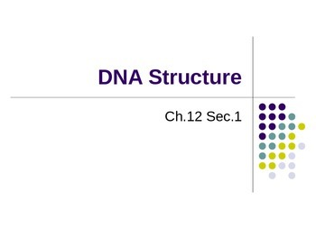 DNA Structure PowerPoint