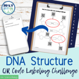 DNA Structure QR Code Labeling Challenge