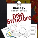 DNA Structure Study Guide - Diagramming for Understanding