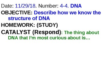 DNA Structure and Replication Powerpoint
