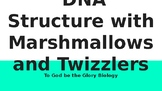 DNA Structure with Marshmallows and Twizzlers (To God be t