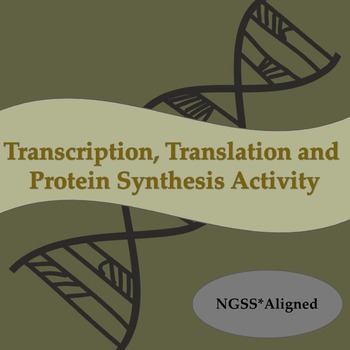 Transcription and translation teaching resources teachers pay teachers dna transcription translation and protein synthesis activity ngss aligned fandeluxe Images