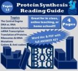 Guided Reading:DNA, RNA, Transcription/Translation, Protei