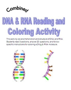 Dna Activity Package