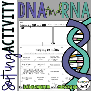 DNA VS RNA Card Sort for Interactive Notebooks, Review, or