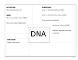 DNA Vocabulary Block