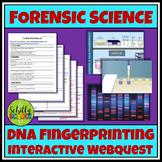 Forensic DNA Fingerprinting Webquest