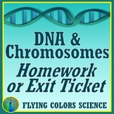 Middle School DNA & Chromosomes Worksheet NGSS MS-LS3-1 HS-LS3-1