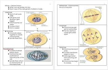 DNA and Genetics Unit Notes, Biology Curriculum, Standards