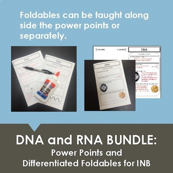 DNA and RNA Bundle: 2 Power points and 2 Graphic Organizer Foldables for INB