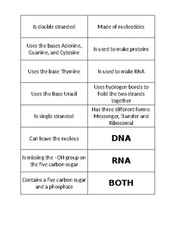 DNA and RNA Card Sort