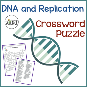 dna and replication crossword puzzle by amy brown science tpt. Black Bedroom Furniture Sets. Home Design Ideas