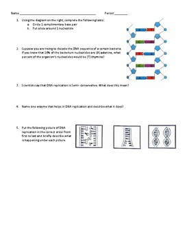 DNA and Replication Quiz & KEY