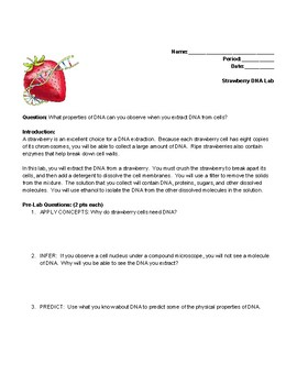 Strawberry Dna Extraction Lab Questions Worksheets Teaching Resources Tpt
