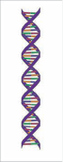 DNA graphic
