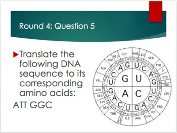 DNA to Proteins: Review Game