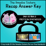 DNA vs RNA and Protein Synthesis Recap Answer KEYS by the Amoeba Sisters