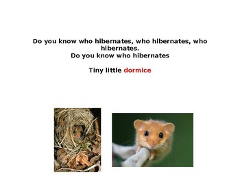 Hibernation activity/Do You Know Who Hibernates