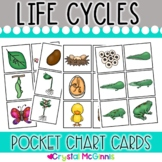 DOLLAR DEAL! Life Cycle Pocket Chart Cards (Frog, Chicken, Butterfly, Plant)