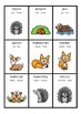 DONKEY CARD GAME - Latin and Greek Roots - Phase 7 - Freebie