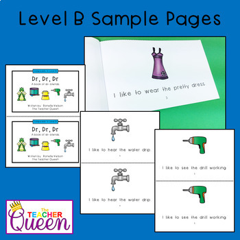 DR- Blend Readers Levels B and D (Printable and Projectable Books)