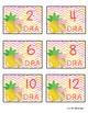 DRA Pineapple  Book Bin Labels