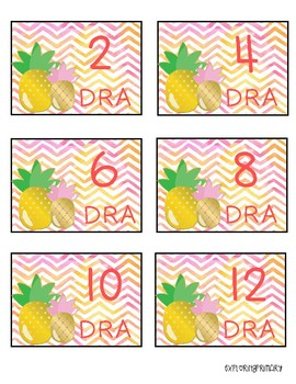 DRA Pineapple  Book Bin Labels