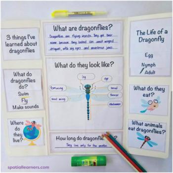 All About Dragonflies Nonfiction Unit