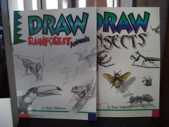 DRAW RAINFOREST ANIMALS   INSECTS  (SET OF 4)