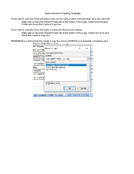 DSA Student Profile in Excel