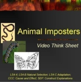 DVD Animal Imposters: Animal Adaptations: Camouflage, Mimicry and Warning