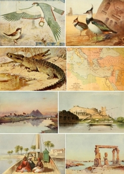 DVD - Banks of the Nile.  Egypt - 230 out-of-copyright images for anything!