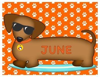 "Dachshund (Wiener Dog) Months of the Year ""Calen-Dogs"""