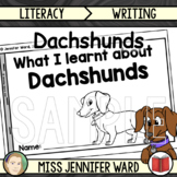 Dachshunds Presentation and Workbook