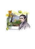 Daffodils by William Wordsworth - Study Unit