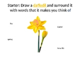 Daffodils by Wordsworth Poetry Lesson