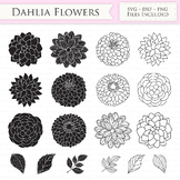 Dahlia Flowers SVG Files - Peony Flowers Outline, Floral s