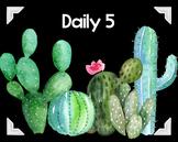 Daily 5 Cactus Decor