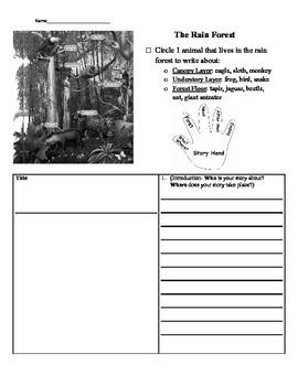 The Rain Forest, Journeys Grade 1, Volume 3