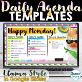 Daily Agenda Template | Daily Schedule Google Slides LLAMA THEME