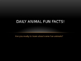 Daily Animal Fun Facts power point
