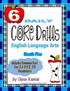 Daily Common Core Drills ~ Month FIVE {Gr. 6 ELA Worksheets}