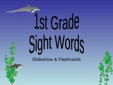 Daily Dolphin Sight Word Practice