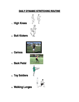 Daily Dynamic Stretching Routine