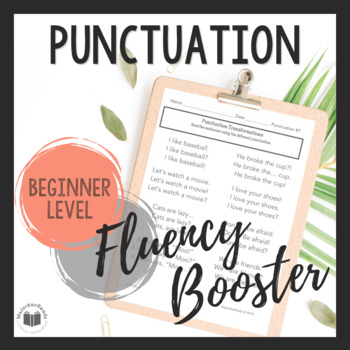 """Daily Fluency"" Booster Pack -- Punctuation"